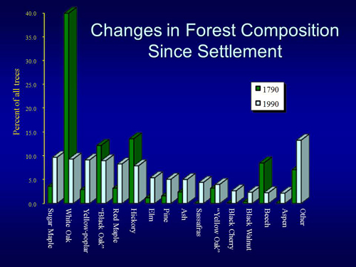 Changes in Forest Composition since Settlement