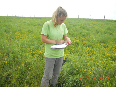 We identified the vegetation to species level at various areas within the plot.