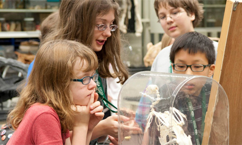 Young Scholars Ages 10-17 Learn with OHIO Professors