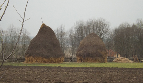 Haystacks near the western Romanian village of Charlottenburg.
