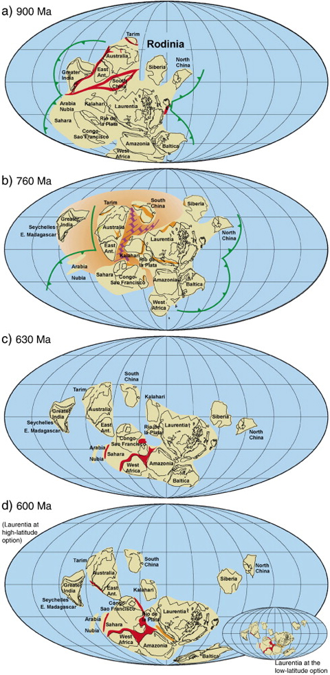 Sequence of reconstructions from Li et al. (2008) showing how the breakup of Rodinia may have led to the assembly of Gondwana and Pannotia. (a) Rodinia at 900 Ma, (b) breakup of Rodinia at 760 Ma coincides with onset of widespread subduction in the peri-Rodinian (Mirovoi) ocean, (c) assembly of continents to form Pannotia (Gondwana + Laurentia) at 630 Ma, and (d) onset of subduction along margins of Gondwana at 600 Ma following amalgamation of Pannotia.