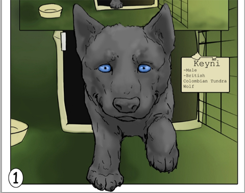 Keyni--The First Walk, written and Illustration by biology student John Buffington