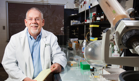 Dr. Stephen Bergmeier, Professor and Chair of Chemistry & Biochemistry