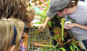 Plant Biology Graduate Students Take Outreach to Community