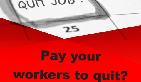 Pay your workers to quit? graphi
