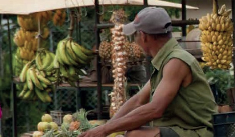 Food in Cuba photo of man sellling vegetables at open air market