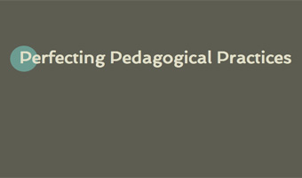 Perfecting Pedagogical Practices Conference | Feb. 24
