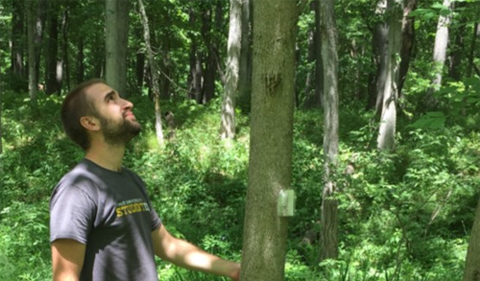 Jeremy Held with Emerald Ash