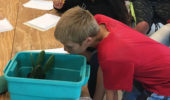 Campers examined the modified leaves (needles) that help cacti stay cool in the hot, dry desert by reducing water loss.