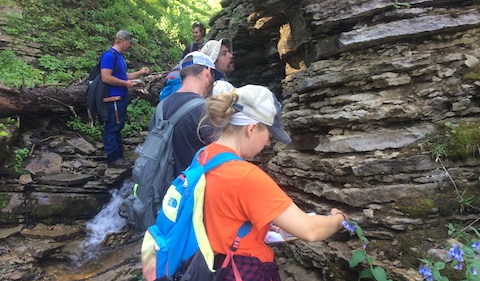 Geology students analyzing sedimentary rocks, students in the foreground at outcropping.