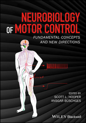 Neurobiology of Motor Control. Fundamental Concepts and New Directions book cover, with graphic of human nerve system