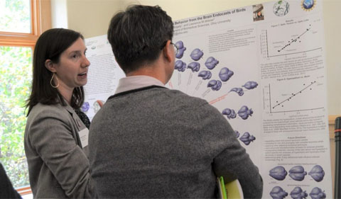 Ph.D. student Catherine Early presents her research to Biological Sciences professor Daewoo Lee. They are shown here standing in front of her poster.
