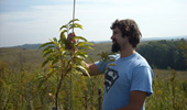 Biologists Revive Chestnut Tree at Former Coal Mine Sites