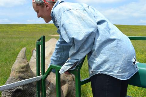 Petting a rhino!