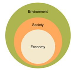 Sustainability Studies: Thriving in the Anthropocene Era