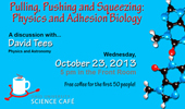Science Café: Pulling, Pushing and Squeezing: Physics and Adhesion Biology with David Tees, Oct. 23