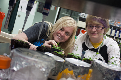 Marilyn Hayden and Megan Moore explore gravity signaling in plants.