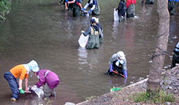 Ohio University volunteers clean the river as the salmon return.