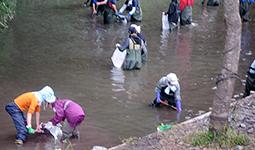 Ohio University volunteers clean the river as the salmon return.