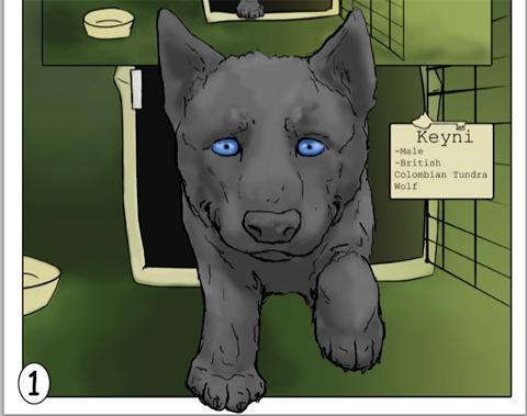 Keyni--The First Walk, written and Illustration by biology student John Buffington
