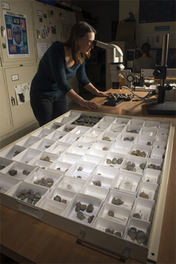 To differentiate the various species, Stigall uses a microscope to analyze fine details of the shell structure. This allows the research team to generate evolutionary trees for all species within a genus. (Photo by Ben Siegel.)