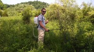 Fighting Invasive Plants at Edge of Appalachia Preserve
