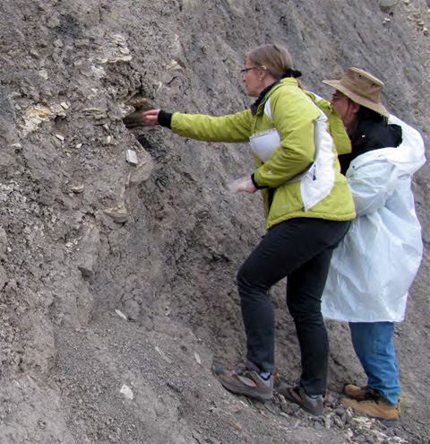 Dr. Elizabeth Gierlowski-Kordesch discussing the nature of lake deposits with workshop participants in Argentina.