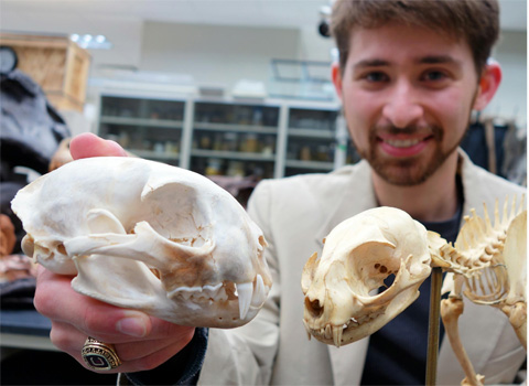 Third-year biology doctoral student Don Cerio and a rufus skull