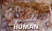Becoming Human theme graphic