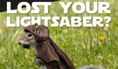 Lost Your Lightsaber? Find Your Force and Prepare for the Fair