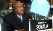 Dr. Abdinur Sheikh Mohammed