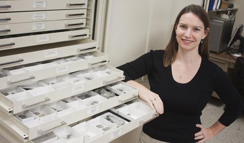 Dr. Alycia Stigall