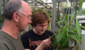 Harold Blazier answers Owen Poteet's questions about the specializations of a Nepenthes plant. Poteet is a plant biology major and volunteers at the greenhouse.