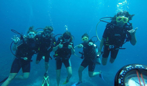 Scuba divers under water     Richardson and other volunteers scuba dive while building coral reefs