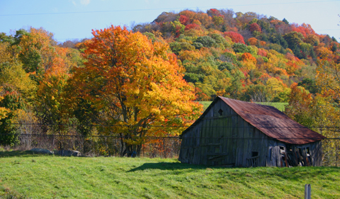 A old barn set against a beautiful autumn back ground