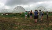 Summer 2016 interns tour a local farm.
