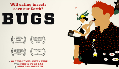 Bugs Will eating insects save our Earth? A gastrionomic adventure with Nordic Food Lab by Andreas Johnsen