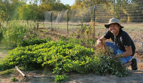 Jordan Francisco with peanut plants at the Plant Biology Learning Garden
