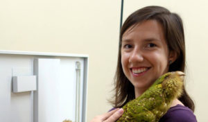 ECOLUNCH | Using Endocasts as Tool to Understand Evolution of Brains and Behaviors in Birds, March 15