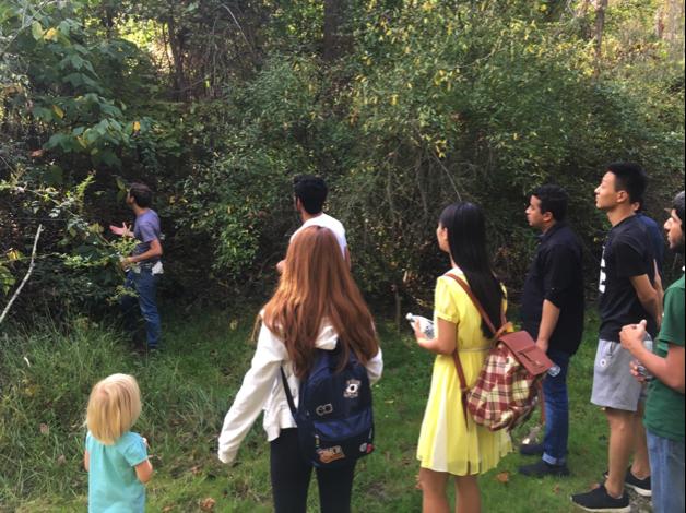 OPIE Pathway Program: Pawpaw Hike