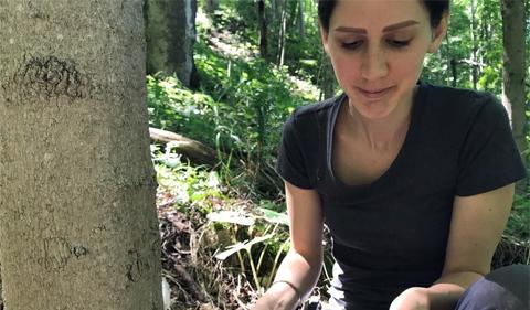 Heidi Bencin, working in field