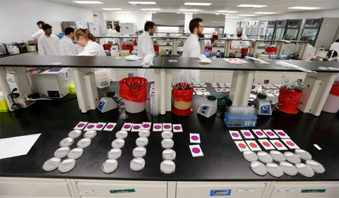 Nestlé Food Safety in Action: The Quality Assurance Center Microbiology Lab Food safety tests being conducted in the General Microbiology Lab at the Nestlé Quality Assurance Center in Dublin, OH. The lab processes approximately 2200 tests per week on environment samples, raw ingredients and finished Nestlé products. Photo by Jay LaPrete/APPhoto by Nestle. Room with many scientists in white coats.