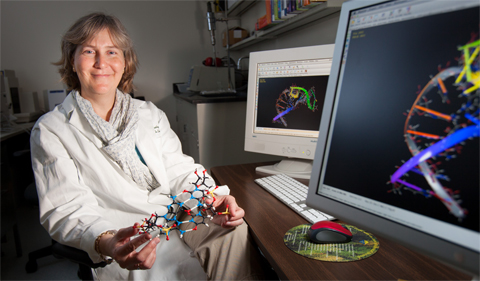 Jennifer Hines, Ph.D., professor of chemistry and biochemistry at Ohio University, is studying RNA riboswitches as a possible new approach to kiling harmful bacteria.