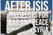 After ISIS: Prospects for War and Peace in Syria, March 5