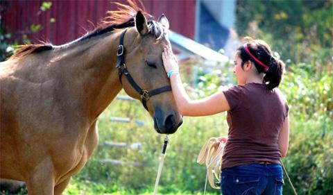 Madeline Groen stroking horse's head.