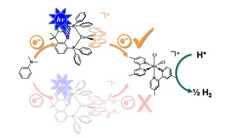 Chemical symbols for heteroleptic Cu(I) photosensitizers.