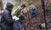 Plant Biology Student Clubs Protect Hemlock Forests