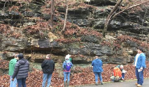Geology students examine the undeformed limestones outside of the rim of the Flynn Creek impact structure, just west of Cookeville, TN