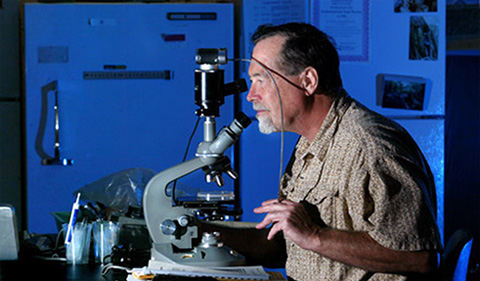 Dr. James Cavender, portrait in lab with microscope
