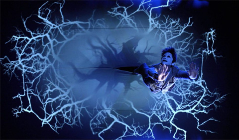 Julie Taymor's A Midsummer Night's Dream
